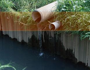 水質汚染の原因と過去の事例、汚染による影響と防止... 水質汚染 生き物が生きていくうえで水は重